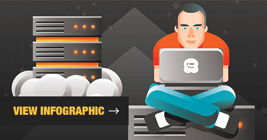 WordPress Hosting Infographic Preview