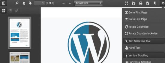 pdf js viewer