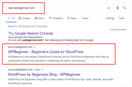 Google results showing that the WPBeginner site has been indexed